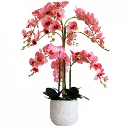 Extra Large Artificial Phalaenopsis Orchid Plants Pink 80cm - ORC029 FR