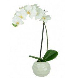 Real Touch Artificial Phalaenopsis Orchid Plant in White Dimpled Pot - ORC021 2B