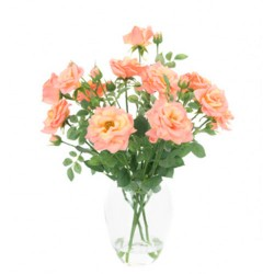 Coral Pink Roses Artificial Flower Arrangement - ROS004