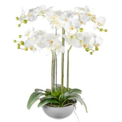 Artificial Phalaenopsis Orchid Plant White in White Bowl 72cm - ORP050