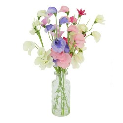 Artificial Sweet Peas in Vintage Style Bottle Vase - SPV007 6B
