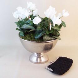 Knightsbridge Artificial Cyclamen Plants in Silver Urn Planter - CYC001 4A