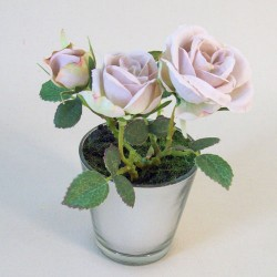 Miniature Amnesia Rose Tree in Silver Pot - ROS038 E OF 7
