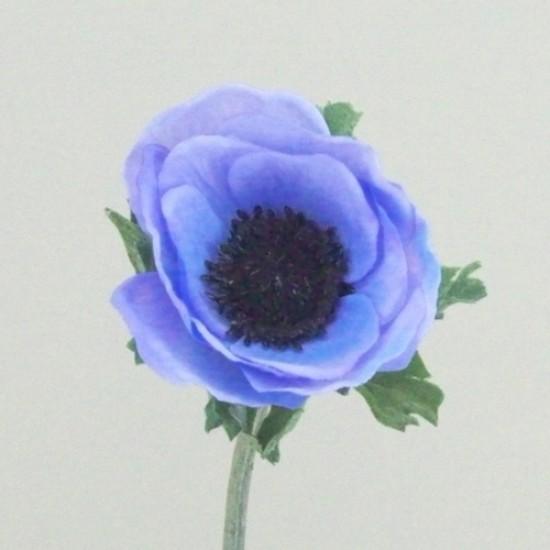 Silk Anemone Blue - A008 B2