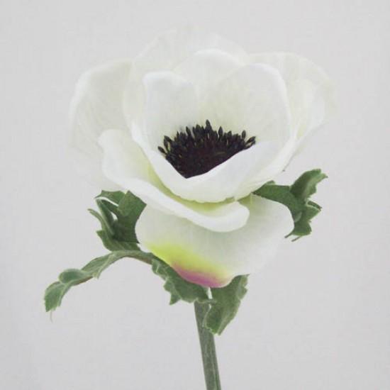 Silk Anemone Ivory - A007 A2