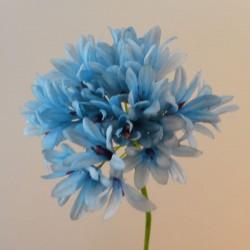 Agapanthus Blue - A048 A1