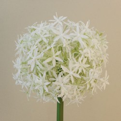 Large Artificial Allium Mount Everest Cream - A002 A1
