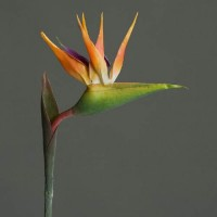 Artificial Birds of Paradise Medium - B001a