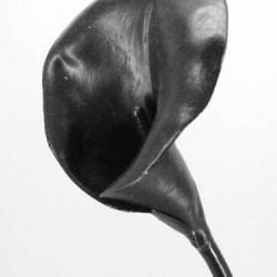 Artificial Calla Lily Black - L047 BX1