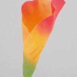 Calla Lily Orange - L055 I2