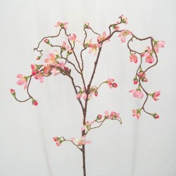 Pink Weeping Cherry Blossom Branch - C018 A3