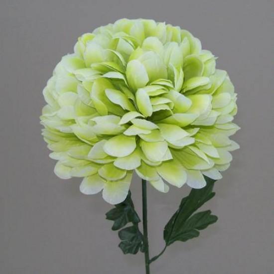 Pompom Chrysanthemum Lime Green - C085 E1