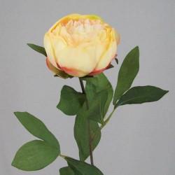 Peony Flowers Apricot - P043 K3