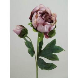 Vintage Peony Flowers Purple - P086 K2