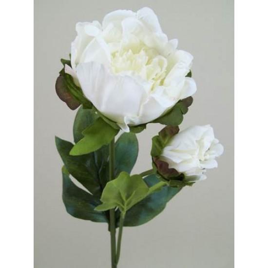 Vintage Peony Flowers Cream - P089 K2