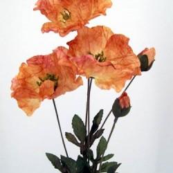 Silk Poppies Amber - P003