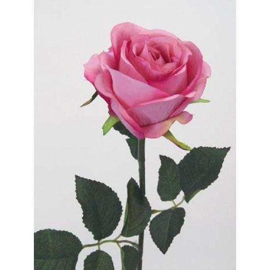 Prize Rose Mid Pink - R053 N2