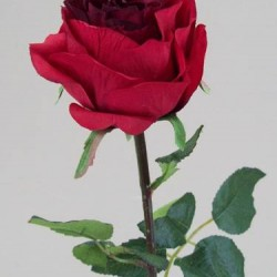 Prize Rose Red - R053a N3
