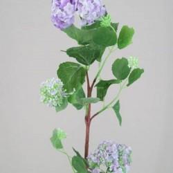 Silk Viburnum | Guelder Rose Lilac - V008 R4