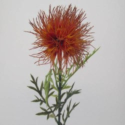 Thistle Spray Flame - T010B R1