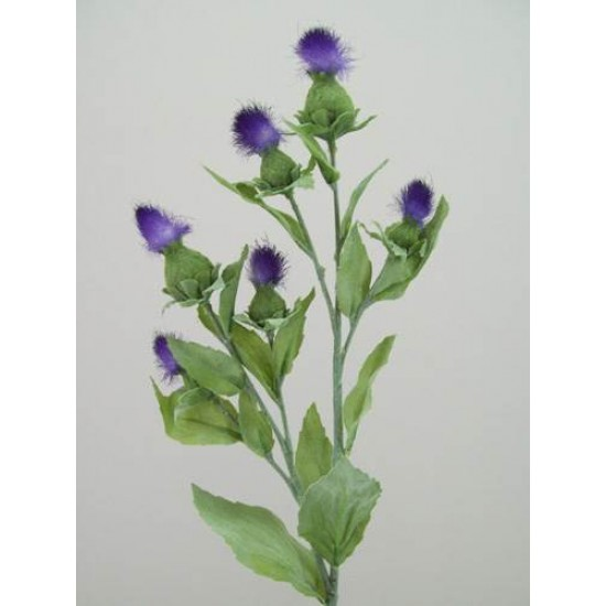 Thistle Spray Purple - T026 R3