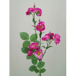 Wild Rose Spray Pink - R104 P2