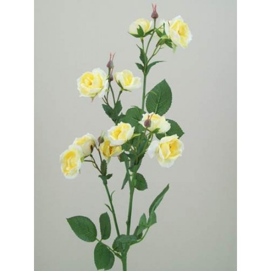 Wild Rose Spray Yellow - R103 P2