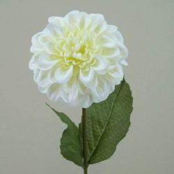 Zinnia Cream - Z022 S2