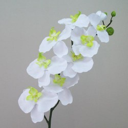 Artificial Phalaenopsis Orchid White - O075 FF1