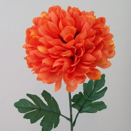 Pompom Chrysanthemum Carnival Orange - C137 D3