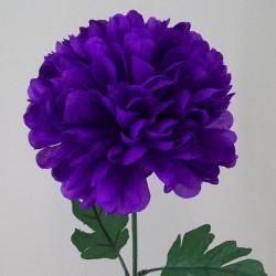 Pompom Chrysanthemum Carnival Purple - C139 D3