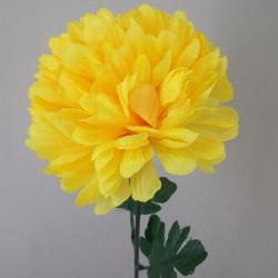 Pompom Chrysanthemum Carnival Yellow - C138 D3