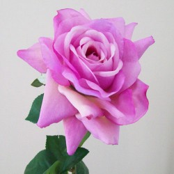 Artificial Tea Rose Vintage Pink - R278 LL1