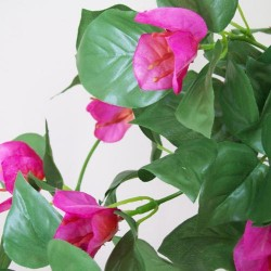 Artificial Silk Trailing Bougainvillea Plant Hot Pink - B024 D2