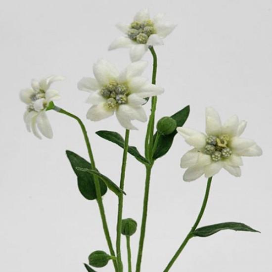 Artificial Silk Edelweiss - E006 FF2