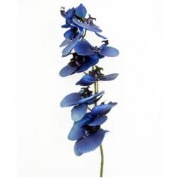 Silk Phalaenopsis Orchid Dark Blue - O024