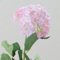 Silk Viburnum | Guelder Rose Pink - V014 R4