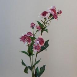 Artificial Astrantia Pink 50cm - A022 B3