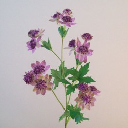 Artificial Astrantia Pink Purple Flowers - A104 B2