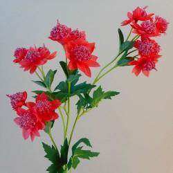 Carnival Astrantia Watermelon Pink Artificial Flowers - A046 A4