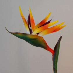 Artificial Birds of Paradise Medium 90cm - B021 B3