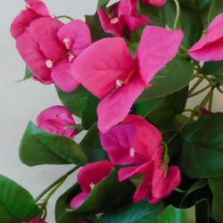 Artificial Trailing Bougainvillea Plant Hot Pink - B057 C1