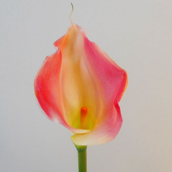Artificial Calla Lilies Real Touch Large Pink - L044 I2