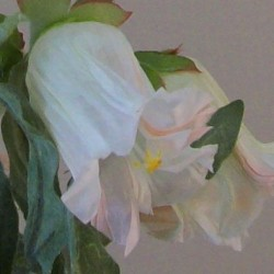 Artificial Campanula Cream Flowers - C185 B1