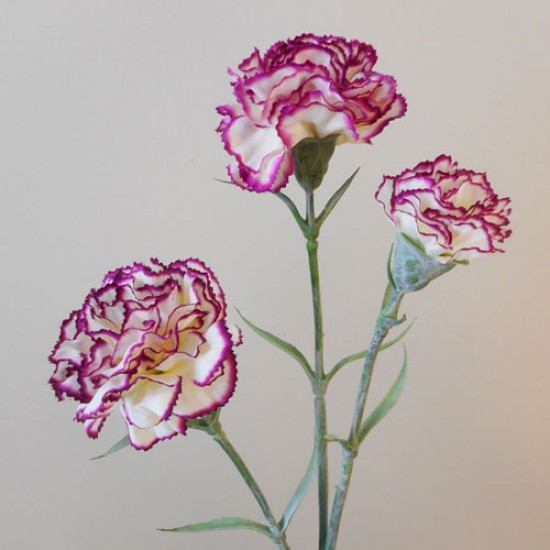 Artificial Spray Carnations Bicolour Cream Magenta - C038 B2