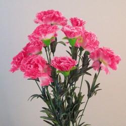 Fleur Artificial Carnations Bunch Pink - C244 A3