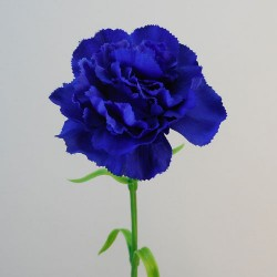 Galaxy Carnation Dark Blue - C093 A3