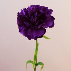 Galaxy Carnation Purple - C036 A3