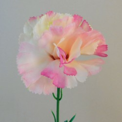 Silk Carnations Pink Cream - C001M A4