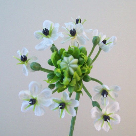 Artificial Chincherinchee Flowers White - C228 A1